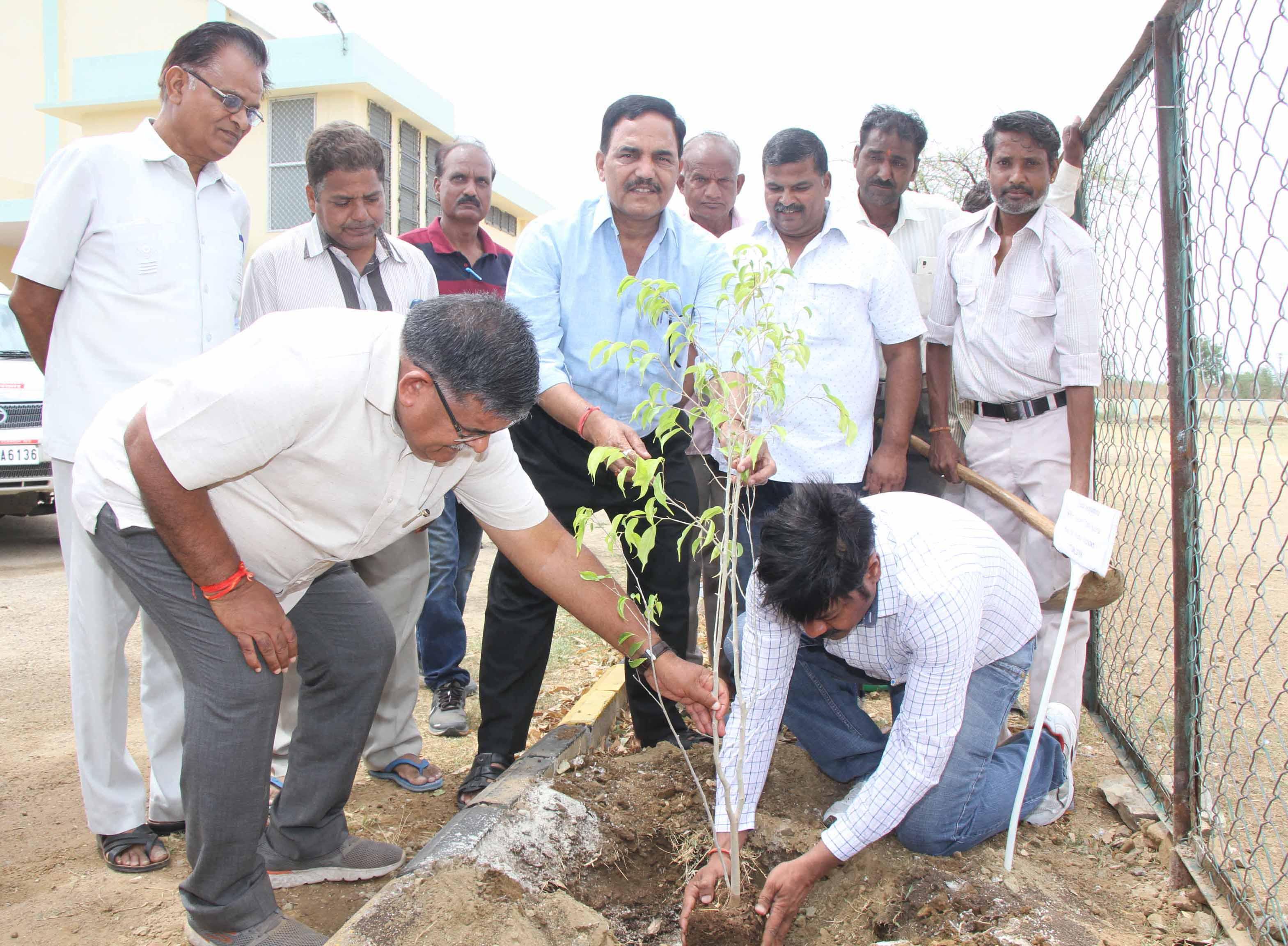 गृह मंत्री ने वृक्ष लगा कर वृहद वृक्षारोपण कार्यक्रम का शुभारंभ किया