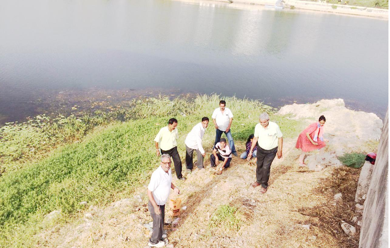 झीलों के नैसर्गिक स्वरूप को लौटाने एवं पक्षियों के आवास व भोजन की व्यवस्था