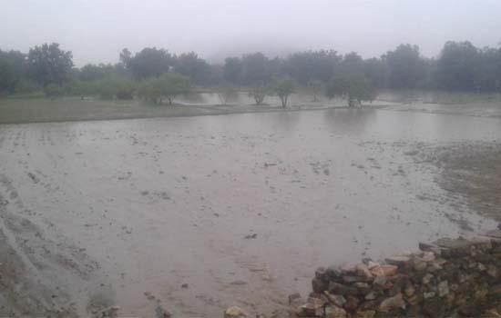हाईवे निर्माण के कारण खेतों में भरा पानी