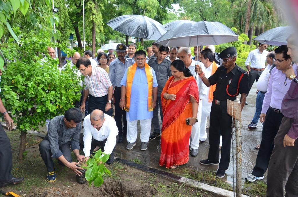 गृहमंत्री ने सरस डेयरी मे किया वृक्षारोपण