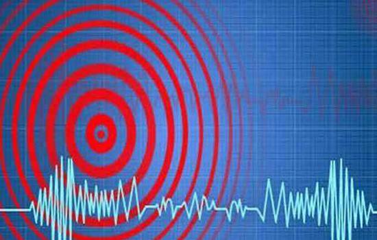 पश्चिम बंगाल, बिहार, असम और सिक्किम में भूकंप के झटके