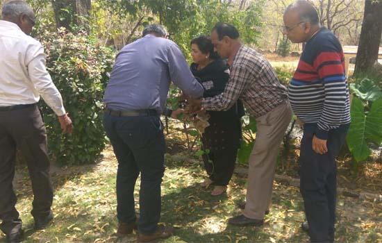 औषधीय पौधे बिमारियों की रोकथाम एवं स्वास्थ्य के लिए लाभदायक - वेंकटेश शर्मा