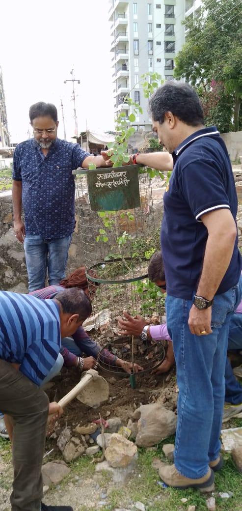 लखावली गांव में लगाये 500 पौधें