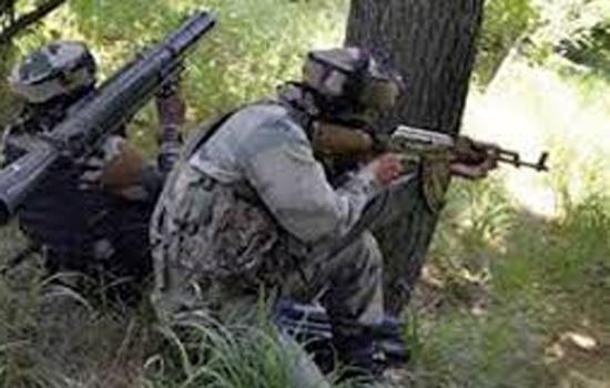 माली में 24 सैनिक और 17 जेहादी लड़ाकू झड़पों मे मारे गए