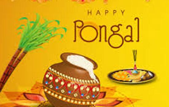श्रीलंका में तमिल समुदाय थाई पोंगल का त्यौहार श्रद्धा से मना रहा है