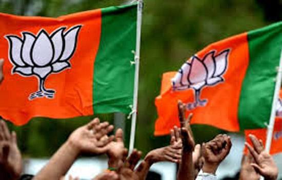 दिल्ली चुनाव में बीजेपी का प्रदर्शन रहा खराब