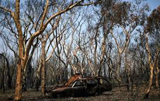 ऑस्ट्रेलिया में भारी बारिश से बुझी जंगलों की आग