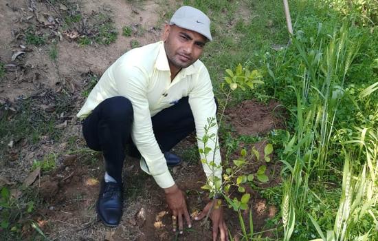 कन्या के जन्म पर पिता ने रक्तदान कर पौधे लगाये
