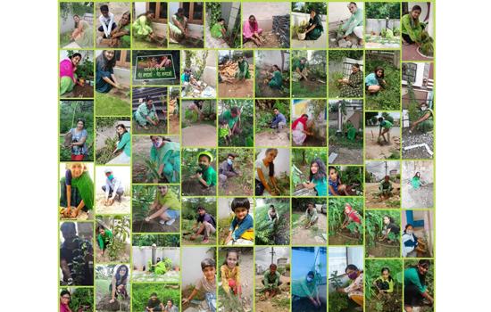 हरियाली अमावस्या पर उदयपुर वासियों ने प्रकृति को ओढाई हरियाली की चादर