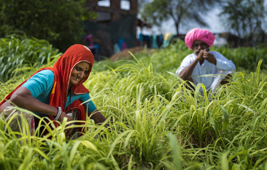 "Hindustan Zinc empowers farmers  in wake of COVID-19 pandemic, through flagship ""Samadhan"" project"