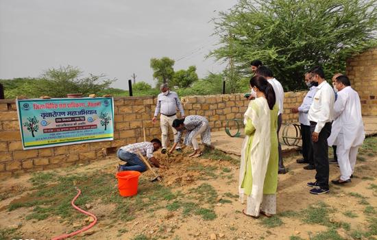 स्वतंत्रता दिवस पर वृक्षारोपण महाभियान का आगाज