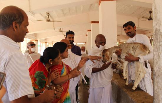 पावापुरी ज्योमेट्री धाम है: अभयदान से बड़ा कोई दान नही:कमलमुनि